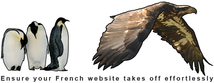 Website Optimization in France